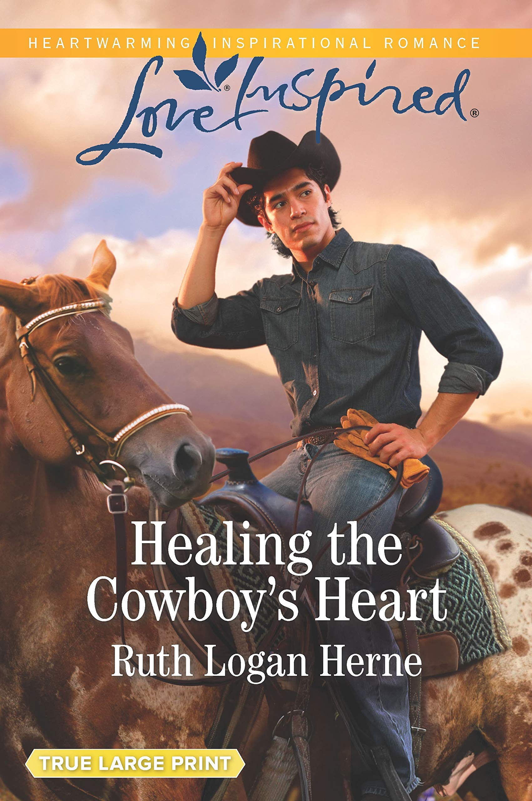 Image result for HEALING THE COWBOY'S HEART RUTH LOGAN HERNE