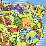 Teenage Mutant Ninja Turtles Boys' Half Shell
