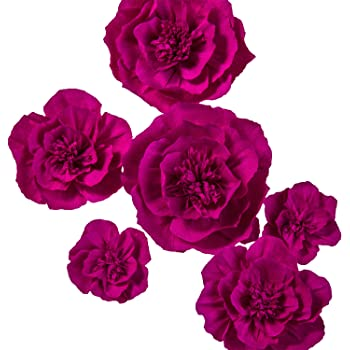 Amazon lings moment large crepe paper flowers 6 x rose lings moment large crepe paper flowers 6 x rose handcrafted paper flower wall hanging mightylinksfo