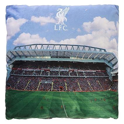 Amazon.com: Liverpool FC - Cojín de estadio con luz LED ...