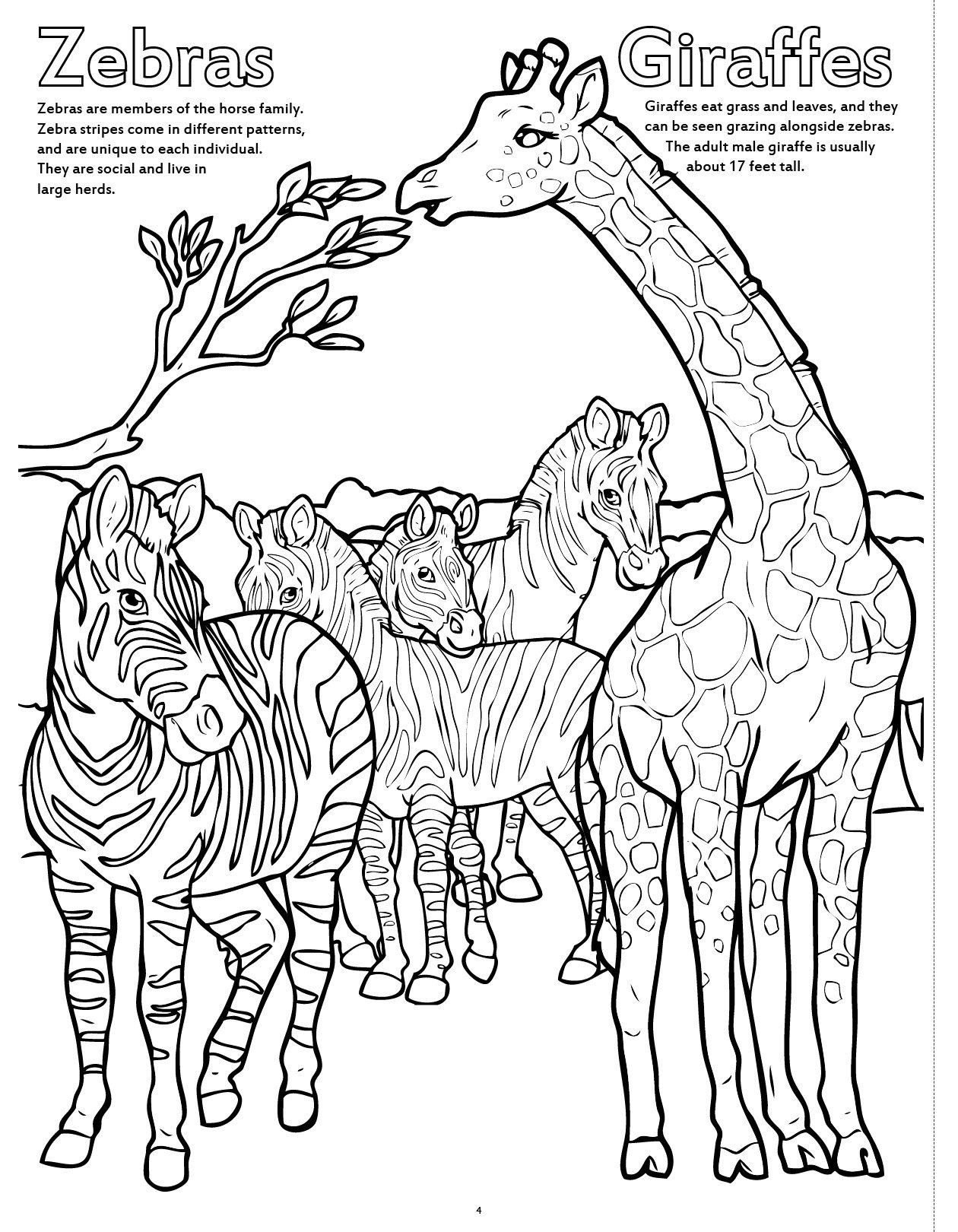 zoo animals giant super jumbo coloring book coloringbook com