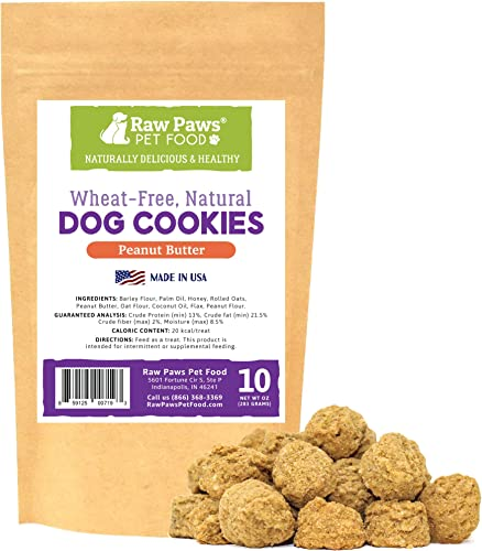 Raw Paws Natural Peanut Butter Dog Treats, 10-oz – Healthy Dog Cookies Made in USA Only – Peanut Butter Puppy Treats – Wheat, Soy Corn Free Soft Dog Snacks – Bakery Dog Treats with Peanut Butter