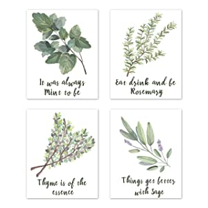 A LuxeHome Wall Art Home Prints Signs Room Decor - for Kitchen and Dining Decorations – Botanical Herbs Spices Plant (Set of 4) Unframed 8 x 10 inches Green