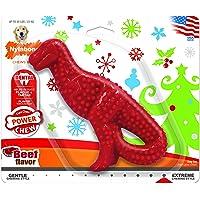Nylabone Dura Chew Original Flavored Dental Dinosaur Chew Toy