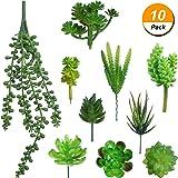 Frienda 10 Pieces Artificial Succulents Different Kinds Unpotted Faux Succulent Plants for Wedding Centerpieces Plants Wall Decoration DIY Materials