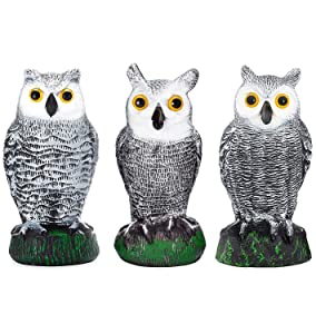 Bird Blinder Scarecrow Fake Owl Decoys - Pest Repellent Garden Protectors – (Small) (Set of 3)