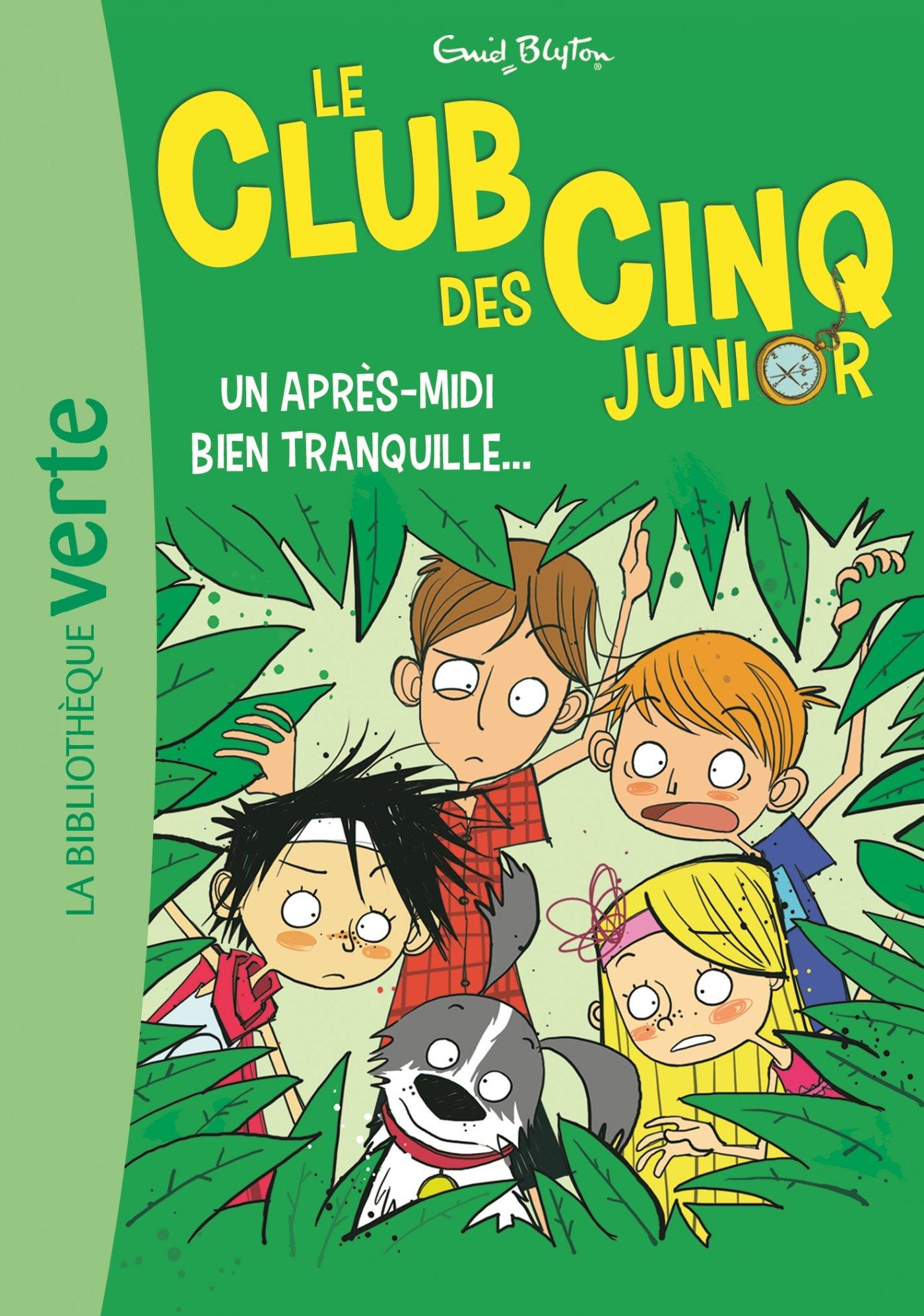 Amazon Fr Le Club Des Cinq Junior 01 Un Apres Midi Bien