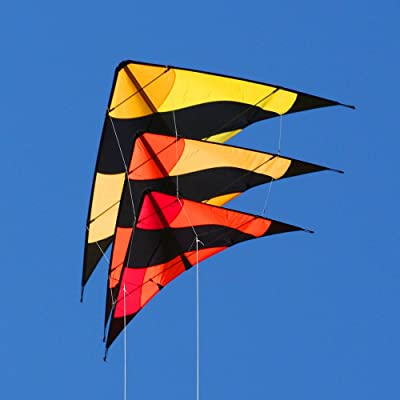 Into The Wind Fleet Stack of 3 Stunt Kites: Toys & Games