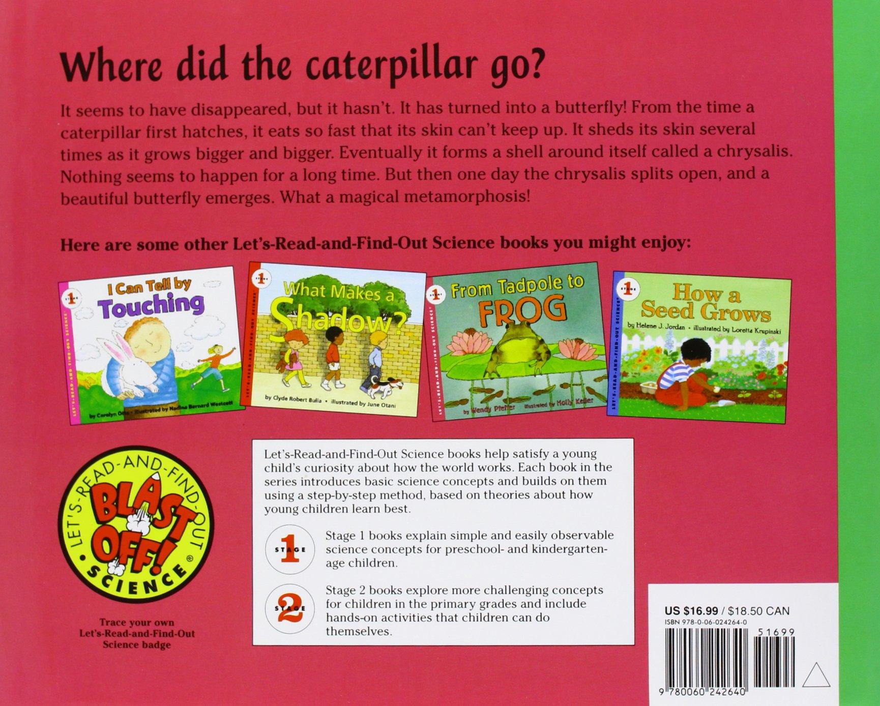 Amazon: From Caterpillar To Butterfly (let'sreadandfindout Science  1) (9780060242640): Deborah Heiligman, Bari Weissman: Books