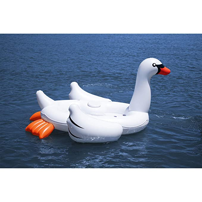 Amazon.com: Solstice Super Swan Oasis Island - Balancín ...