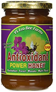 Raw Antioxidant Power Honey YS Eco Bee Farms 13.5 oz Paste