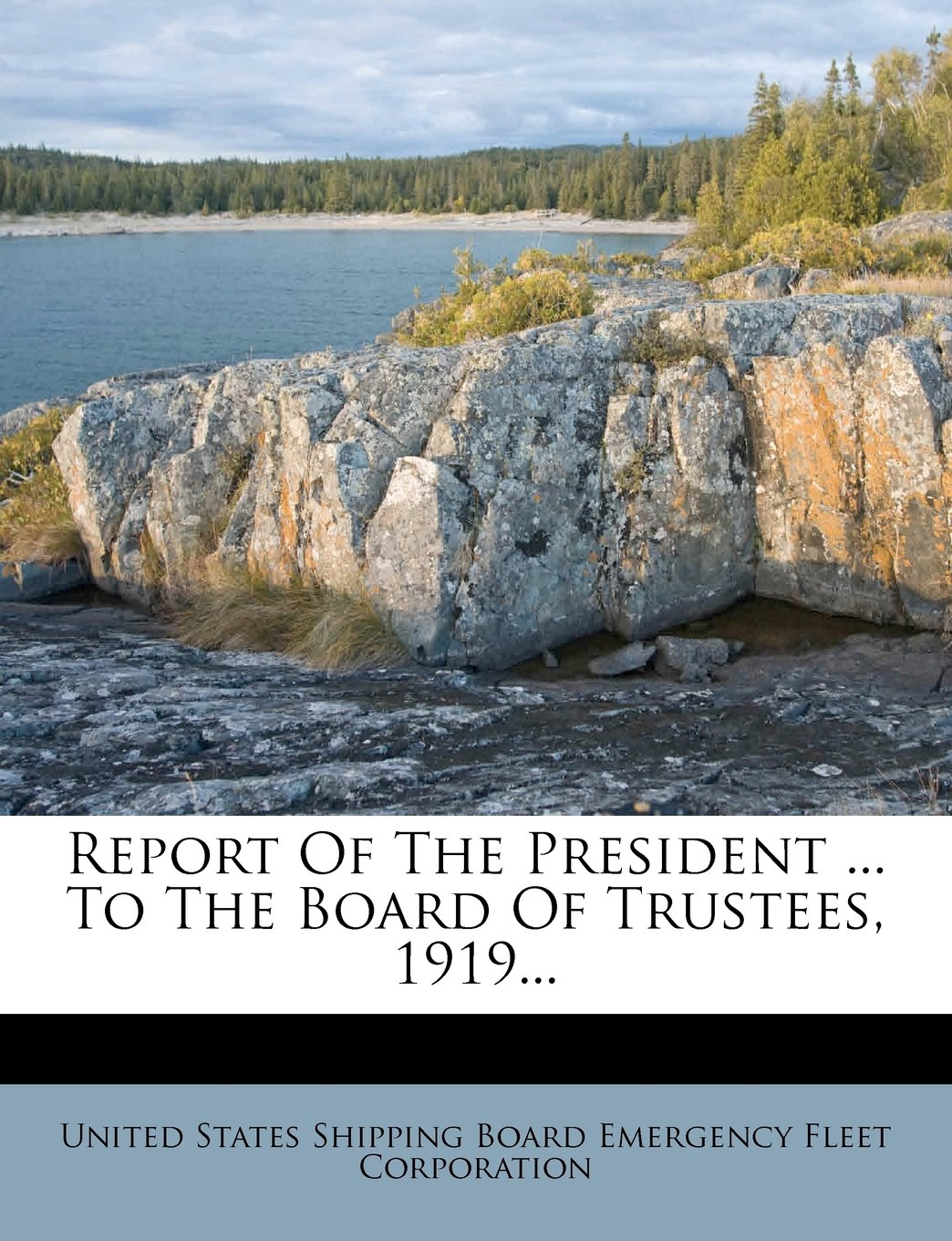 Report Of The President ... To The Board Of Trustees, 1919... PDF