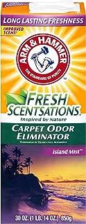 product image for Arm & Hammer Carpet Odor Elimantor, Island Mist 30 oz., Pack of 6