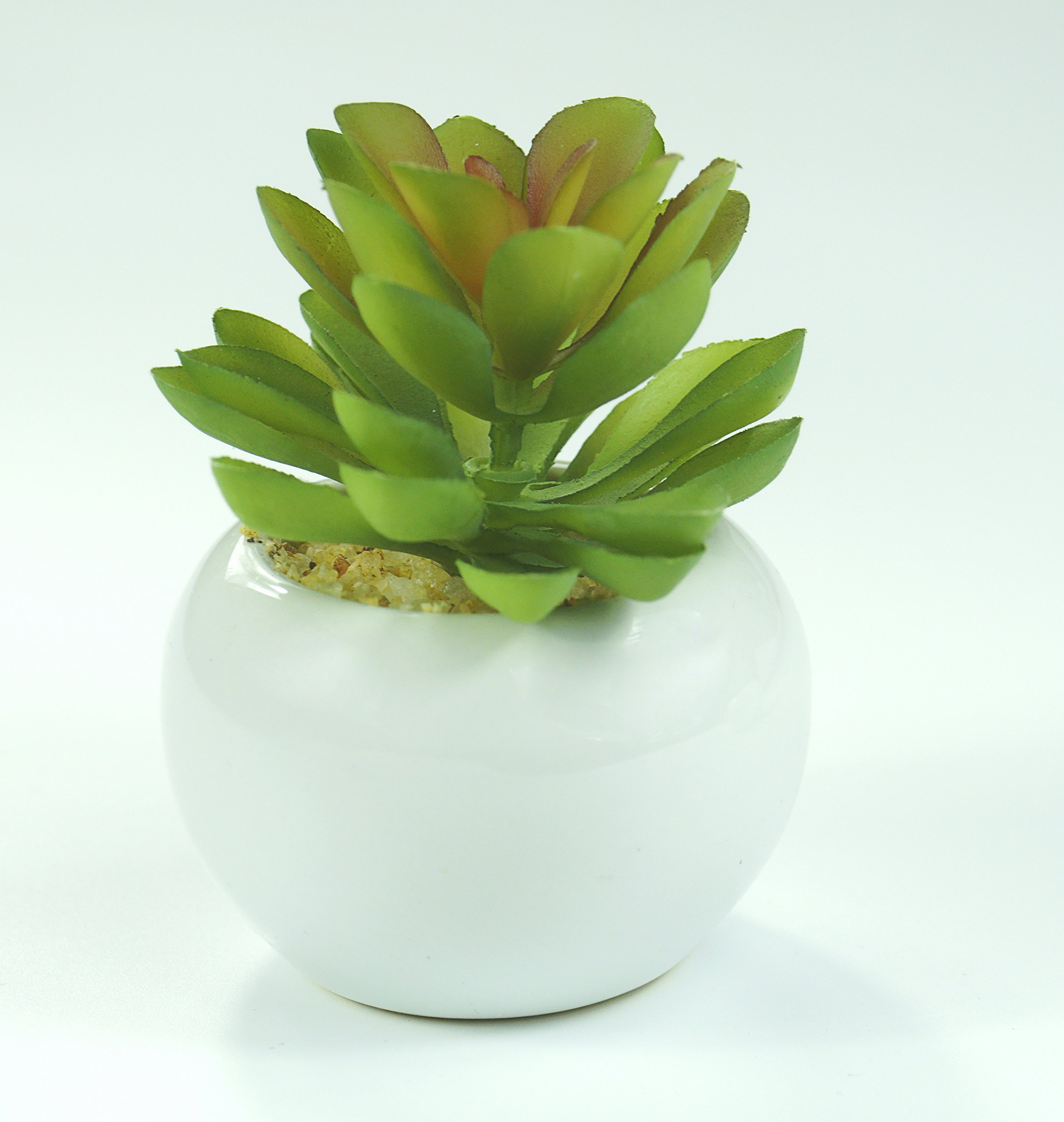 All-In-One-Mini-Artificial-Faux-Succulents-White-Ceramic-Planter-Pots-Home-Office-Table-Decoration-Grift