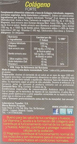 Nutri-Dx Colágeno Forte Hidralizado - 10 Sobres: Amazon.es: Salud y cuidado personal