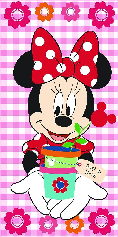 Export Trading Disney-Toalla de Microfibra con diseño Mickey & Friends, 140 x 70 cm, Unico 140x70x1 cm: Amazon.es: Hogar