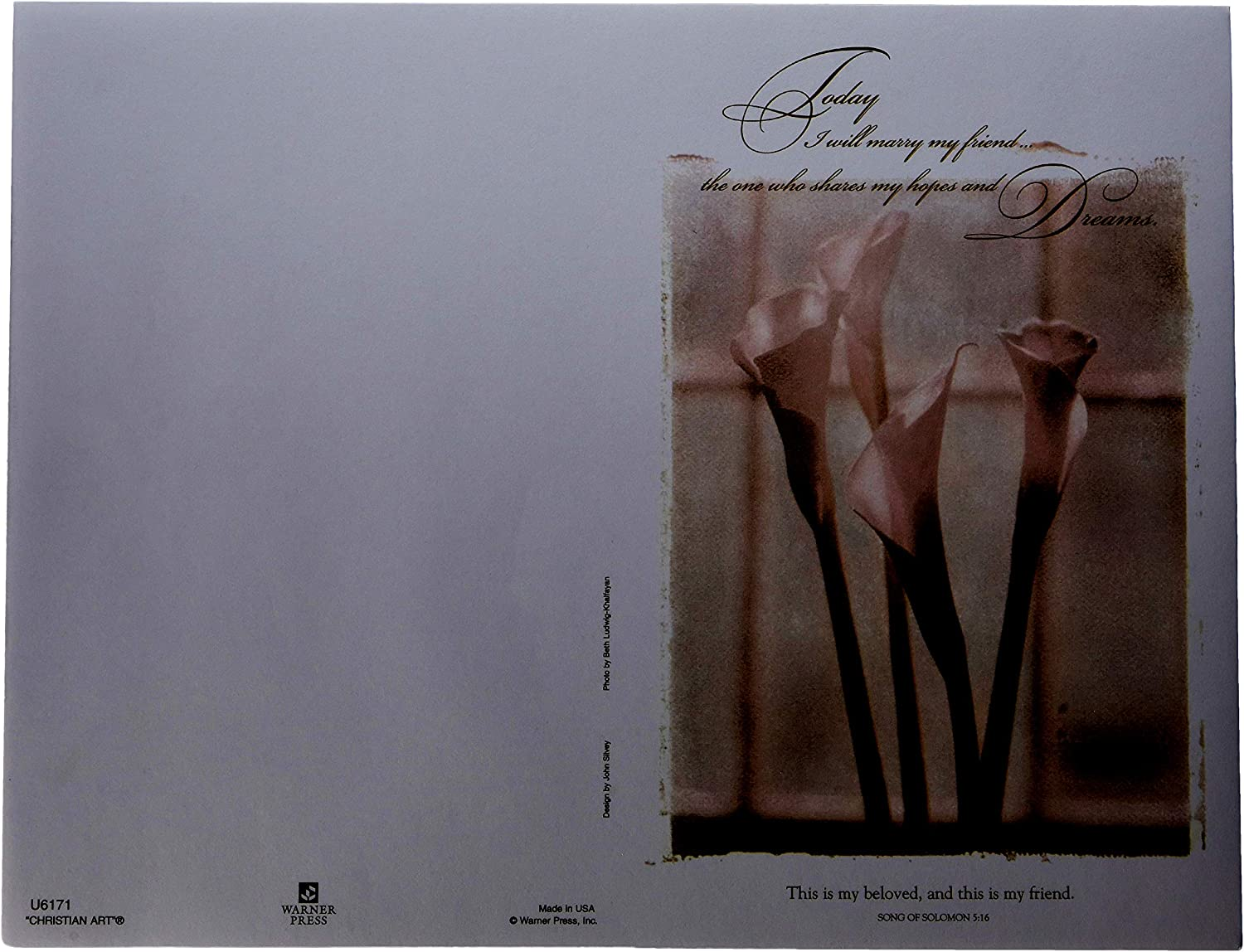 Darice, VL6171, 100 Pack, Today I will Marry my Best Friend, Invitation Paper