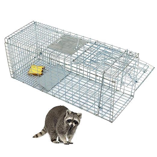 Amazon.com: ZENY - Jaula de acero para animales vivos, 31.9 ...
