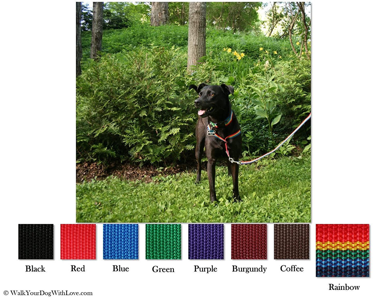 Walk Your Dog With Love - Arnés para Perros: Amazon.es: Productos ...