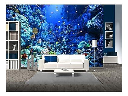 amazon com wall26 self adhesive wallpaper large wall mural seriesimage unavailable