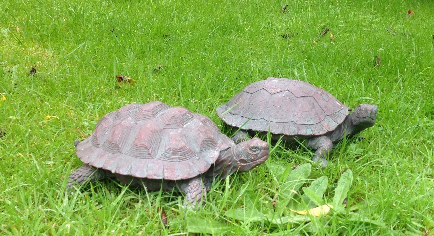 Set of two Tortoises with a bronze finish garden ornament 28x18 Weatherproof
