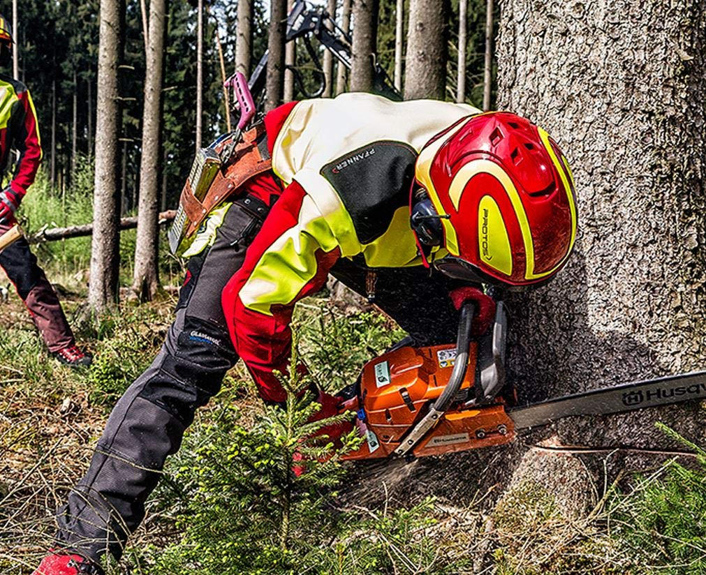 Protos Integral Forest Safety Helmet with Hearing Protection for Forestry Inserts Brush Cutting Activities Wood Processing