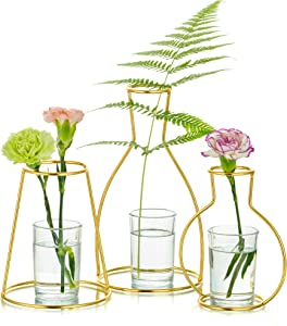 Nuptio Vases Set of 3 Glass Vases with Metal Frame, Modern Gold Frame Creative Desktop Planter Set, Flower Holder Decorations for Wedding Living Room, Office, Party