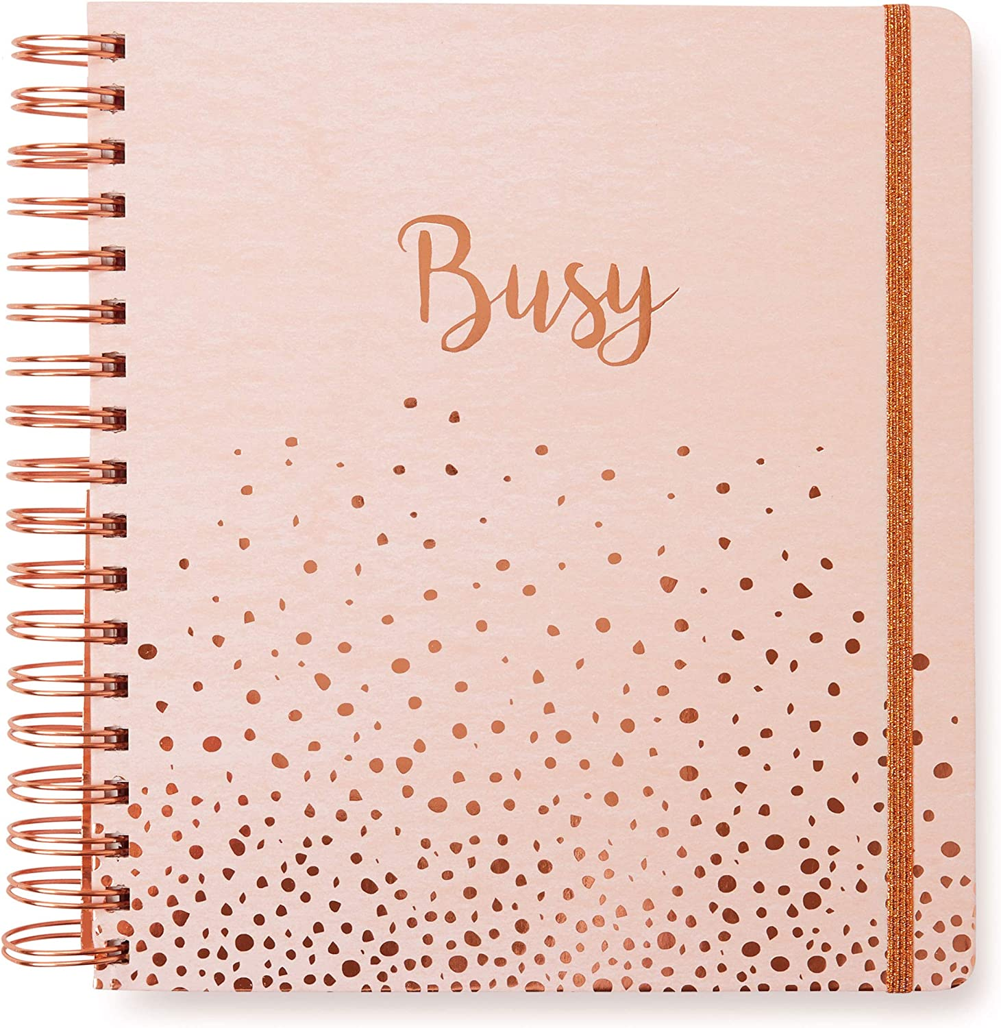 2020 Busy, 12 Month Daily Planners/Calendars: Tri-Coastal Design Planners with Monthly, Weekly and Daily Views - Personal Planner Notebook for Work or Home