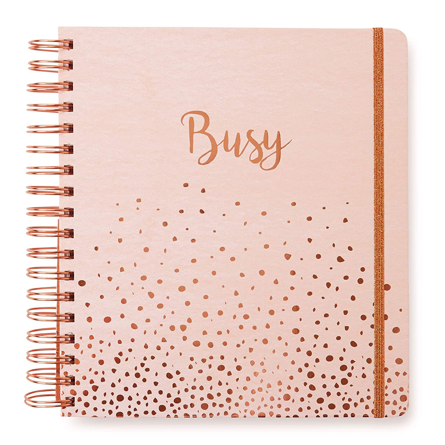 February 2020 Calendar School 11968 Amazon.: 2019 2020 Gold Dots, 17 Month Daily Planners