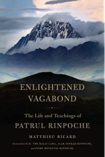 Amazon buddhahood without meditation dudjom lingpas visions enlightened vagabond the life and teachings of patrul rinpoche fandeluxe Images