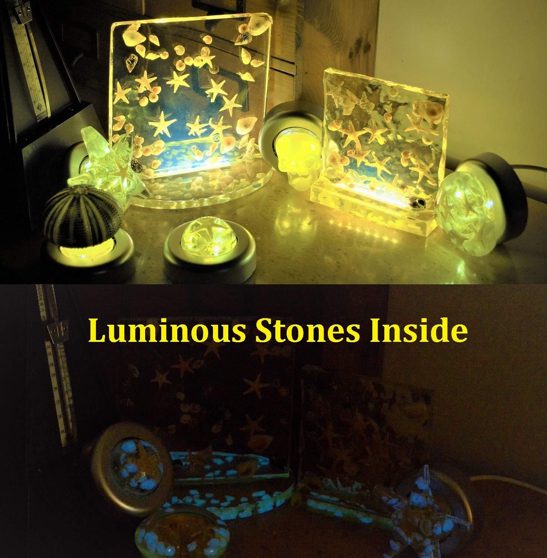 Sea Urchin Shell Bed Light ,Liberflor Handmade Resin Desk Bedside Lamp Decor with Luminous Stones,Warm LEDs,Stepless Brightness Adjustment & Brightness Memory,1 Pack,5V USB DC Powerd