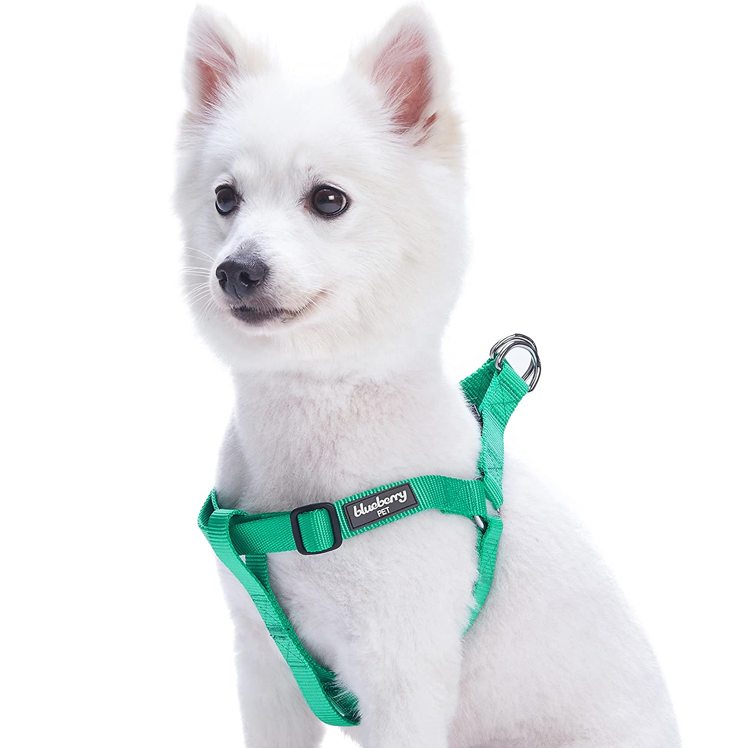 Blueberry Pet Step-in Classic Dog Harness, Chest Girth 51cm-66cm, Very Berry, Medium, Adjustable Harnesses for Dogs B01NAI7JKL エメラルド (67-98cm) 胴回り (67-98cm) 胴回り|エメラルド