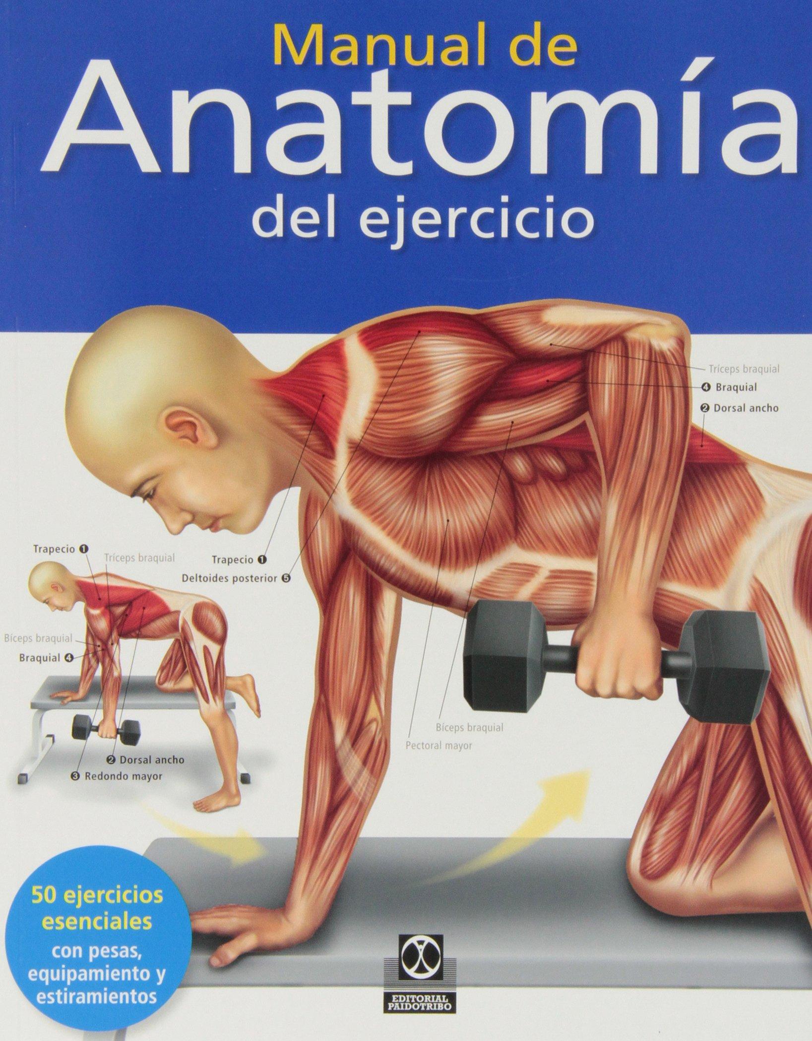 Manual De Anatomía Del Ejercicio (Deportes): Amazon.es: Ken Ashwell: Libros