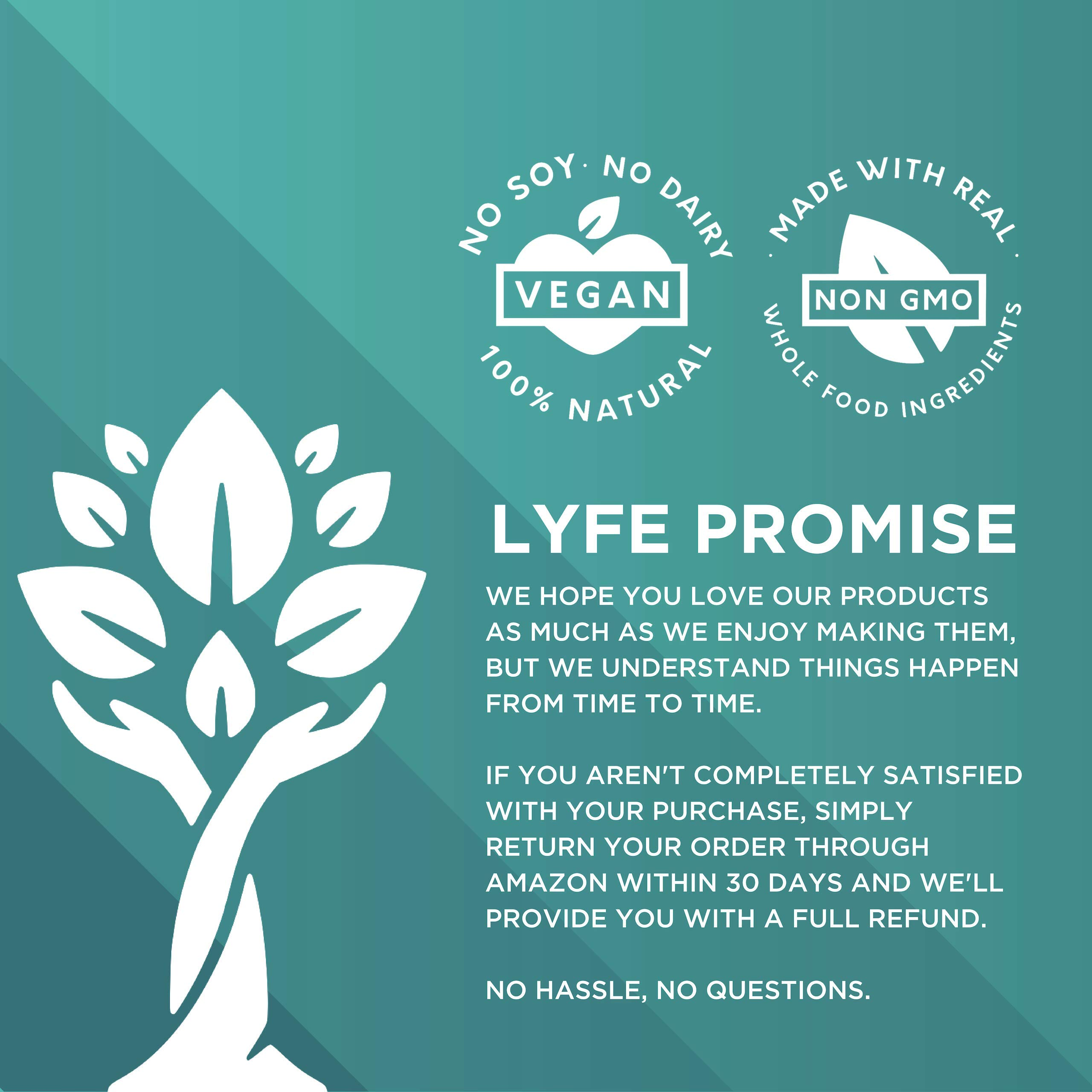 LYFE FUEL Transformation Bundle - Meal Replacement Shakes for Optimal Nutrition - Support a Whole Food Plant-Based Diet & Weight Loss - Vegan, Keto, Low Carb (2 Bags - Chocolate + Vanilla, 28 Meals) by LYFE Fuel
