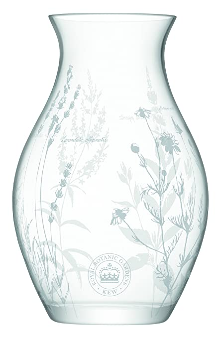 Lsa International Rbg Kew Floral Vase H28cm Clear Amazon