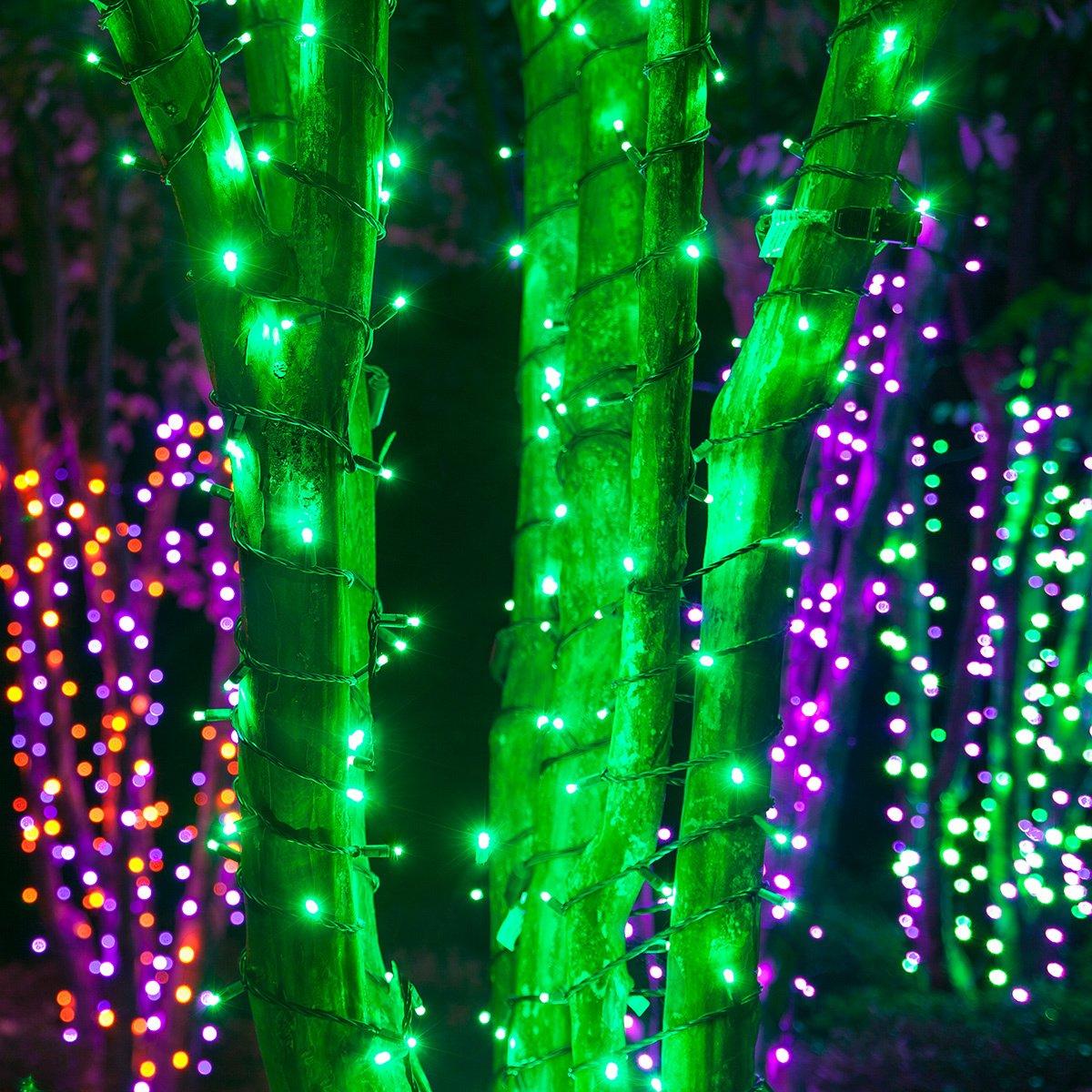 Amazon.com: LED Christmas Mini Light Set, 5mm Lights, Indoor ...