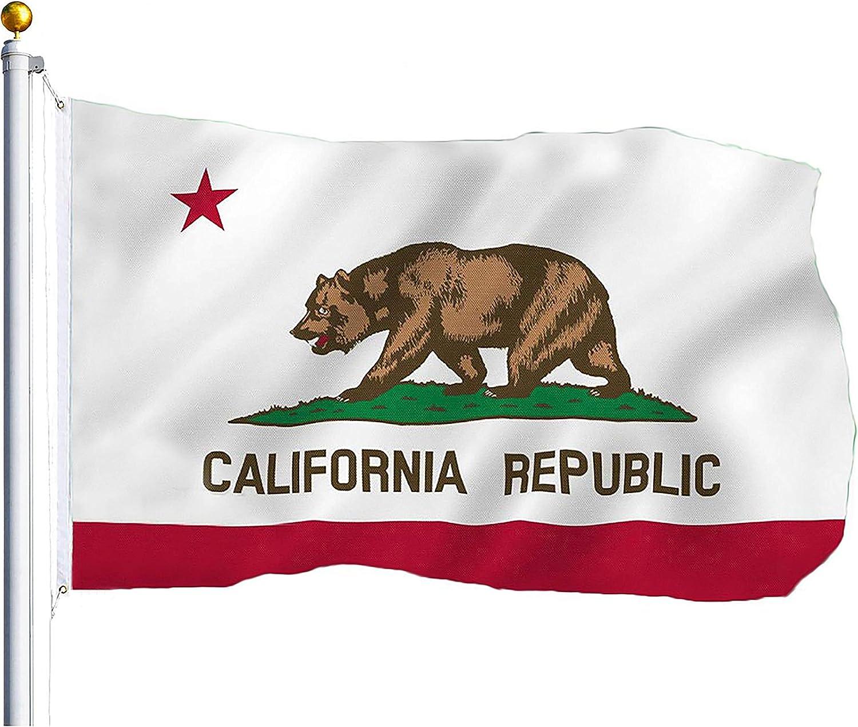 Heavy Duty 150D Super Polyester California Republic Flag 4x6 Foot flag Banner