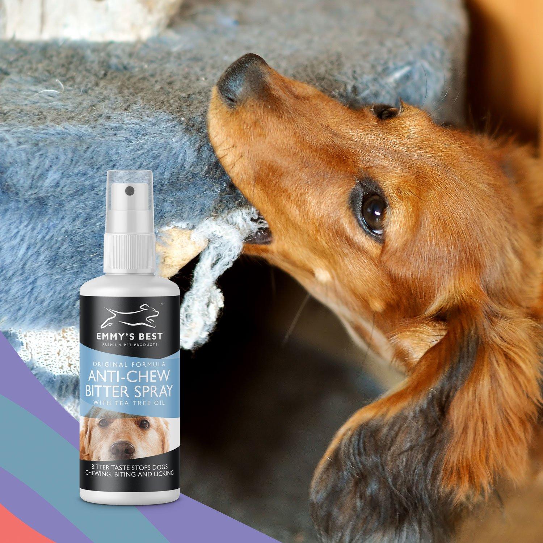 Amazon.com : 8 OZ #1 Premium Pet Chew & Scratch Deterrent - More ...