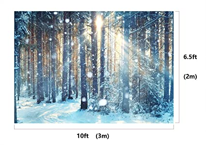 10x6.5ft Microfiber Frosty Winter Landscape Snowy Forest Party Backdrop Seamless No Creases Folding and Washable Photo Booth Background
