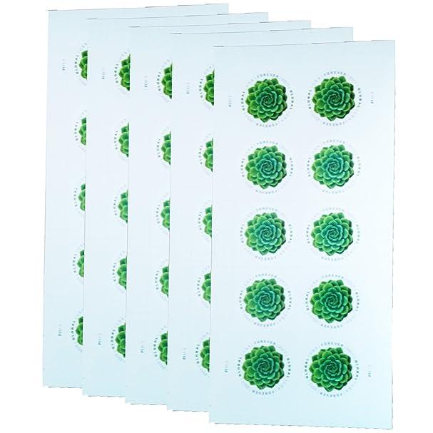 Amazon.com: Green Succulent Sheet of 10 Global USPS First Class ...