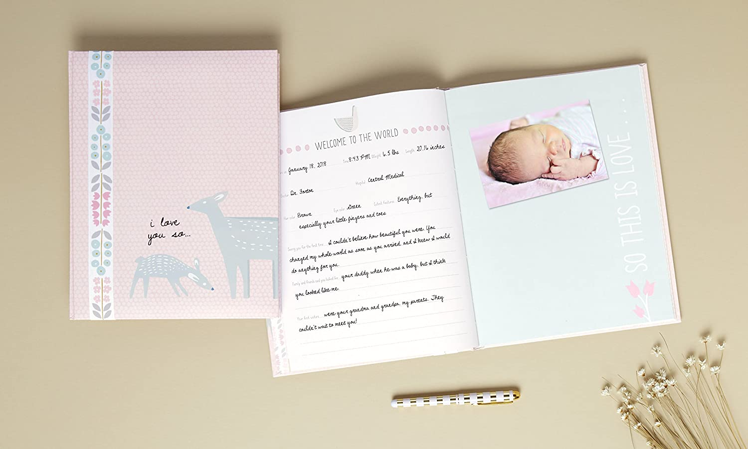 Gibson I Love You So Woodland Baby Girl Memory Book C.R 64 pages