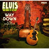 Way Down in the Jungle Room [Vinyl LP]