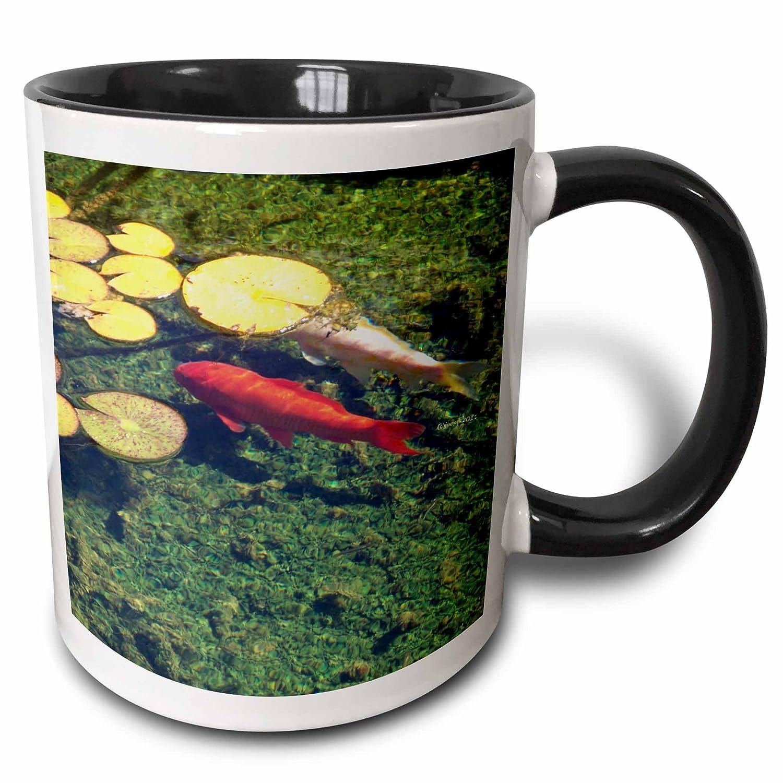 Two Tone Black Mug 11 oz Multicolored 3dRose 21060/_4 Coy Fish