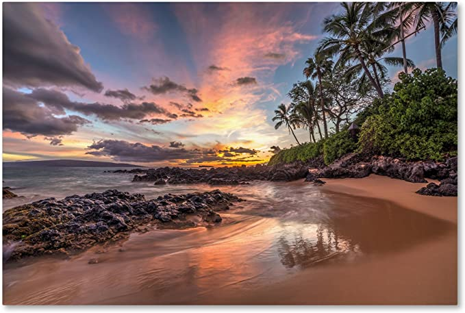 The Wandering Grace Photography Tropical ORLANDO PALM SUNSET 4x6 5x7 8x10 Options