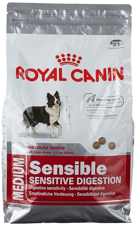 hundefutter royal canin junior royal canin with. Black Bedroom Furniture Sets. Home Design Ideas
