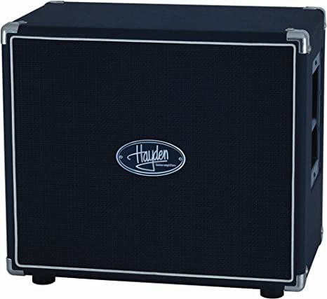 Hayden Amps 118-20 - Amplificador para guitarra: Amazon.es ...
