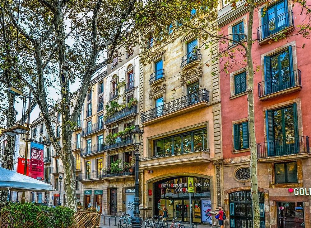 LAMINATED 36x24 inches POSTER: Barcelona Spain Facade Tree Street Building Catalonia Architecture European Spanish Urban City Exterior Windows Balcony Store Shop Lamp Lamp Post
