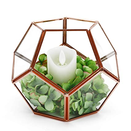 Amazon Com Rose Gold Geometric Terrarium Glass Planter Box Modern
