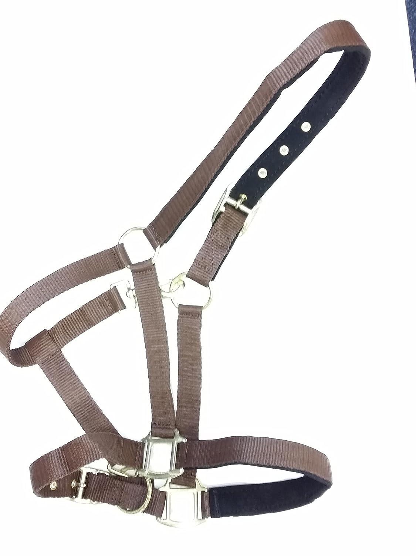 Northern Equestrian Nubuck Padded Nylon Horse Headcollar//Halter Full, Sky Blue