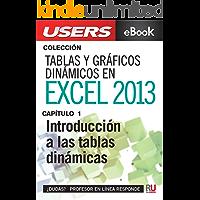 Tablas y gráficos dinámicos en Excel 2013: Introducción a las tablas dinámicas (Colección Tablas y gráficos dinámicos en Excel 2013)